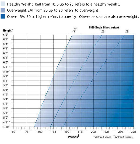 weight and bmi